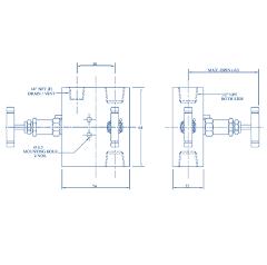 2 way manifold valve