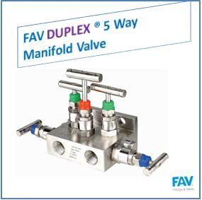 FAV Duplex 5 Way Manifold Valve