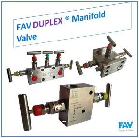 FAV Duplex Manifold Valve