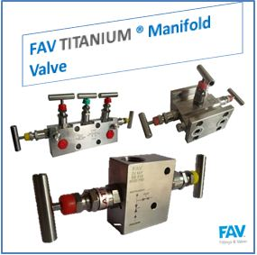 FAV Titanium Manifold Valve