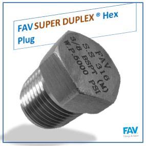 Super Duplex Plug
