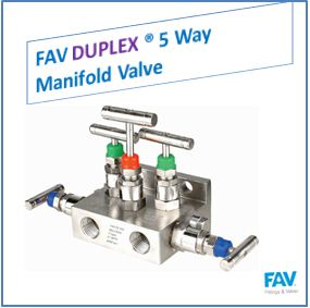 FAV Duplex 5 Way Manifold Valve
