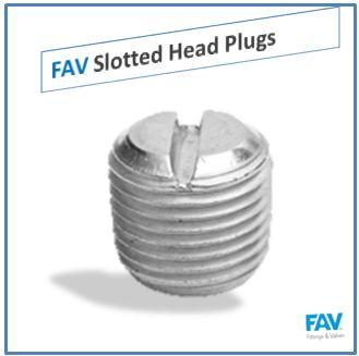Slotted Head Plugs